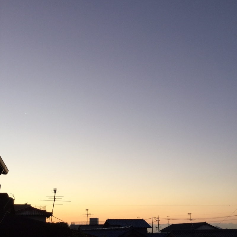 f:id:ichikawa-seipanten:20150911055057j:image:w580
