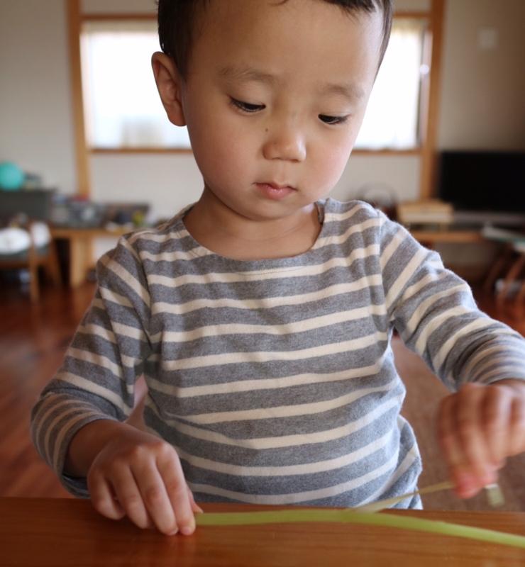 f:id:ichikawa-seipanten:20160414171244j:image:w700