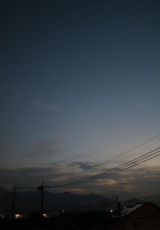 f:id:ichikawa-seipanten:20161117174752j:image:w500