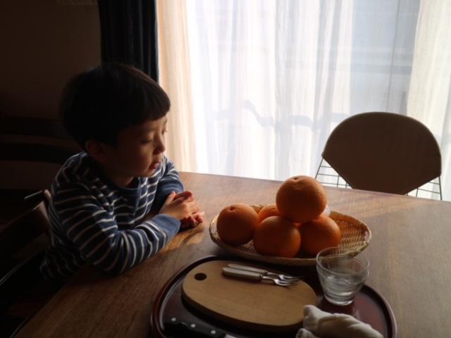 f:id:ichikawa-seipanten:20190316162003j:plain