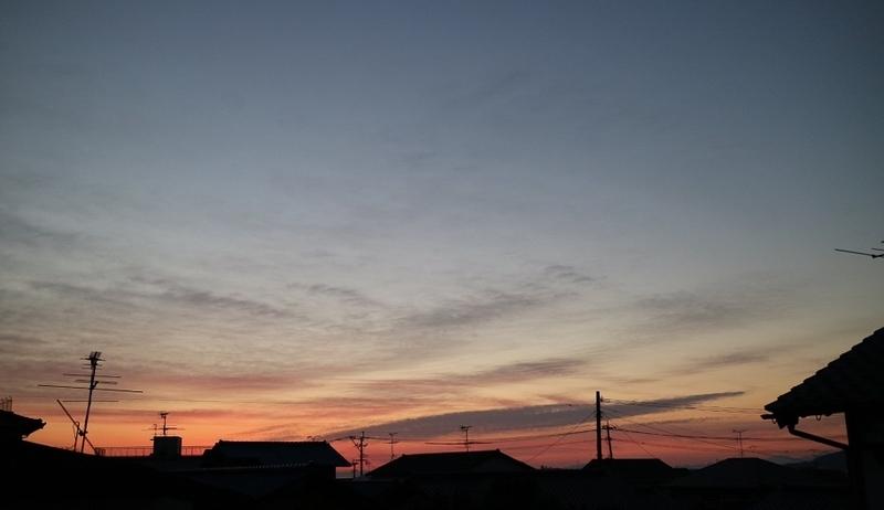 f:id:ichikawa-seipanten:20191105124619j:plain