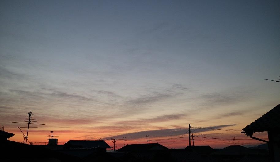 f:id:ichikawa-seipanten:20201222112627j:plain