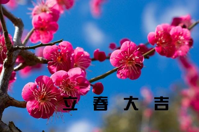 f:id:ichikayuiha89:20170202144751j:plain