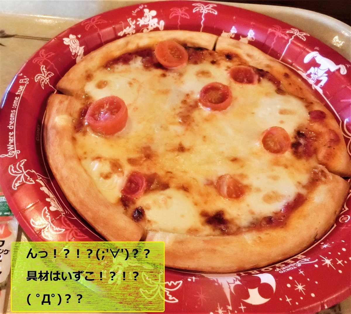 f:id:ichiko-disneyblog:20190828145532j:plain