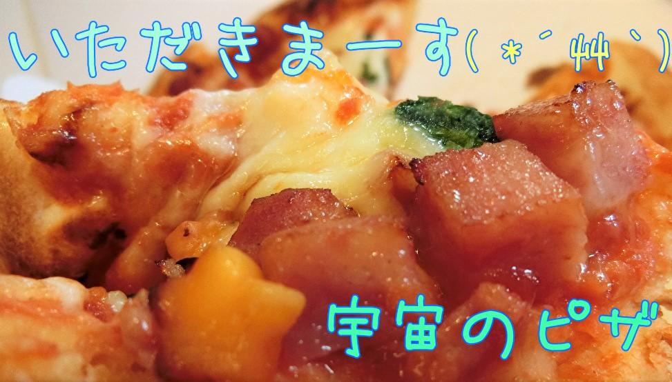 東京ディズニーランドピザ