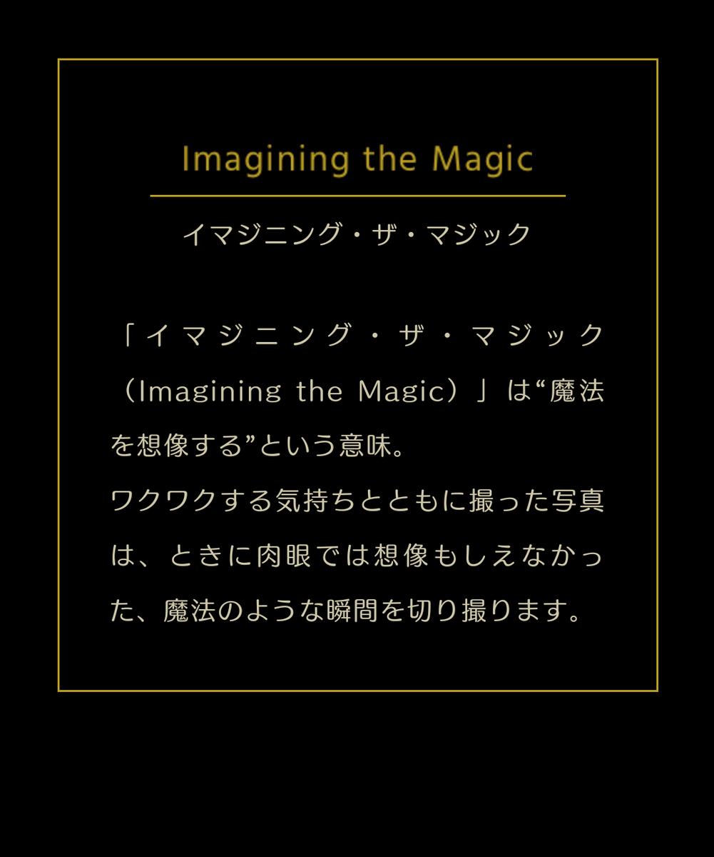 f:id:ichiko-disneyblog:20191012230626p:plain