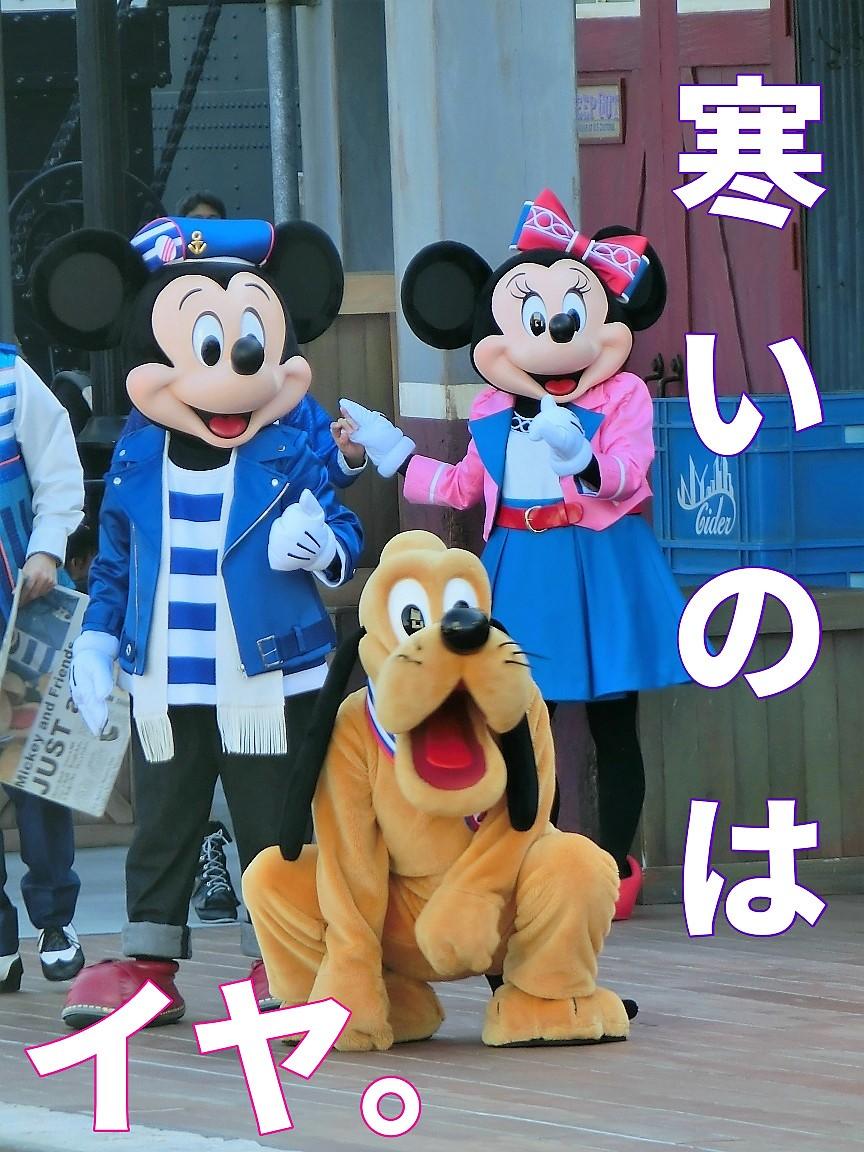 f:id:ichiko-disneyblog:20191111195130j:plain