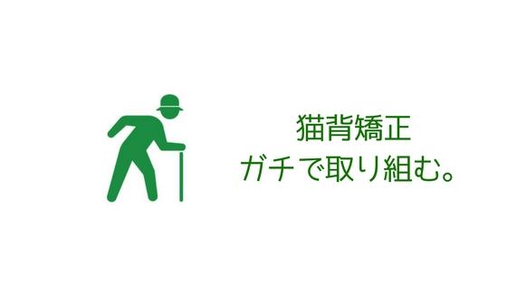 f:id:ichimaro10:20171111150406j:plain