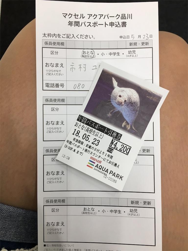f:id:ichimurayuu:20180603202849j:image