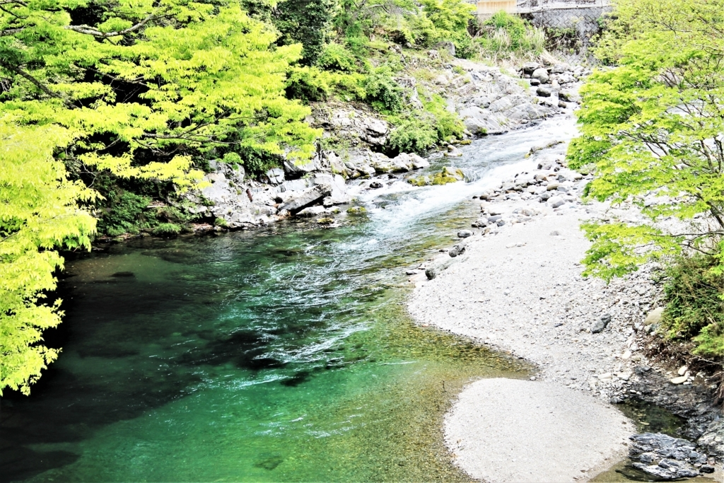 f:id:ichinokai-kanazawa:20170602162342j:plain