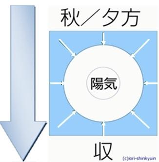 f:id:ichinokai-kanazawa:20200311183939j:plain