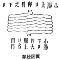f:id:ichinokai-kanazawa:20200904184648p:plain
