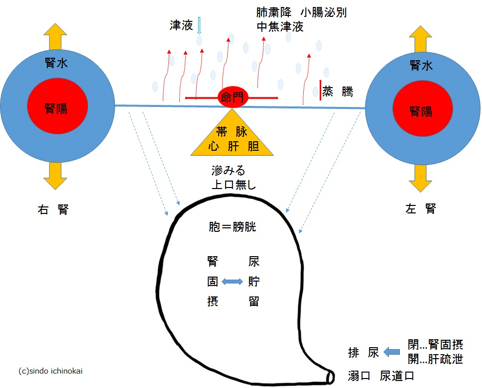 f:id:ichinokai-kanazawa:20200912055036j:plain