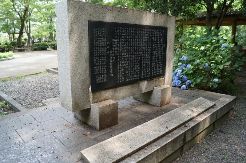 f:id:ichionaoki:20130618095937j:image:w360