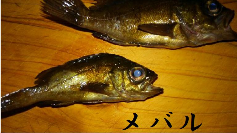 f:id:ichisshi:20160929160421p:plain
