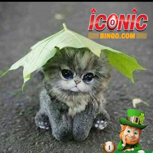f:id:iconicbingo:20171012184550p:plain