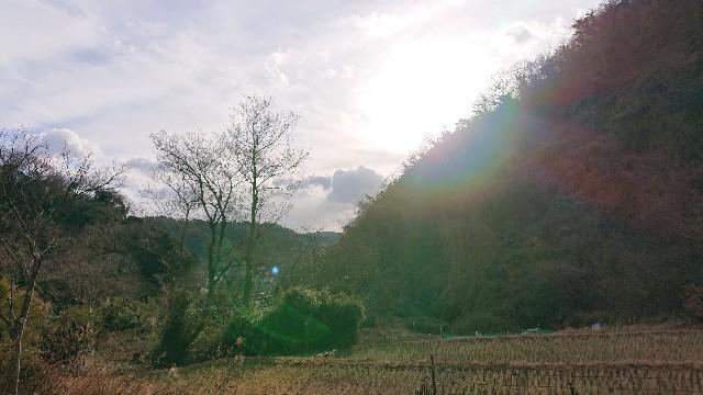 f:id:ideale-misaki:20210113195340j:image