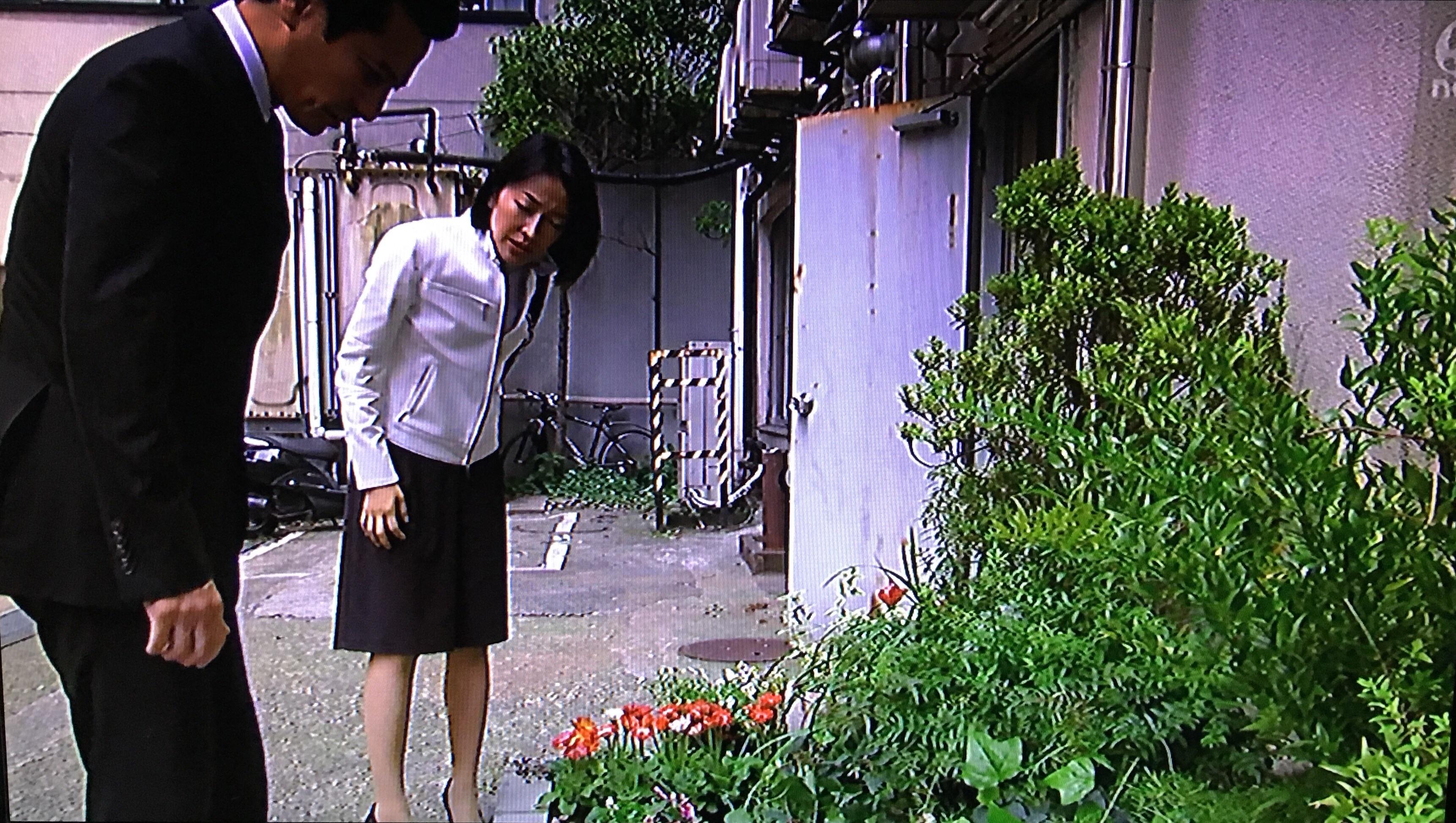 f:id:idehazuki:20160615224529j:image