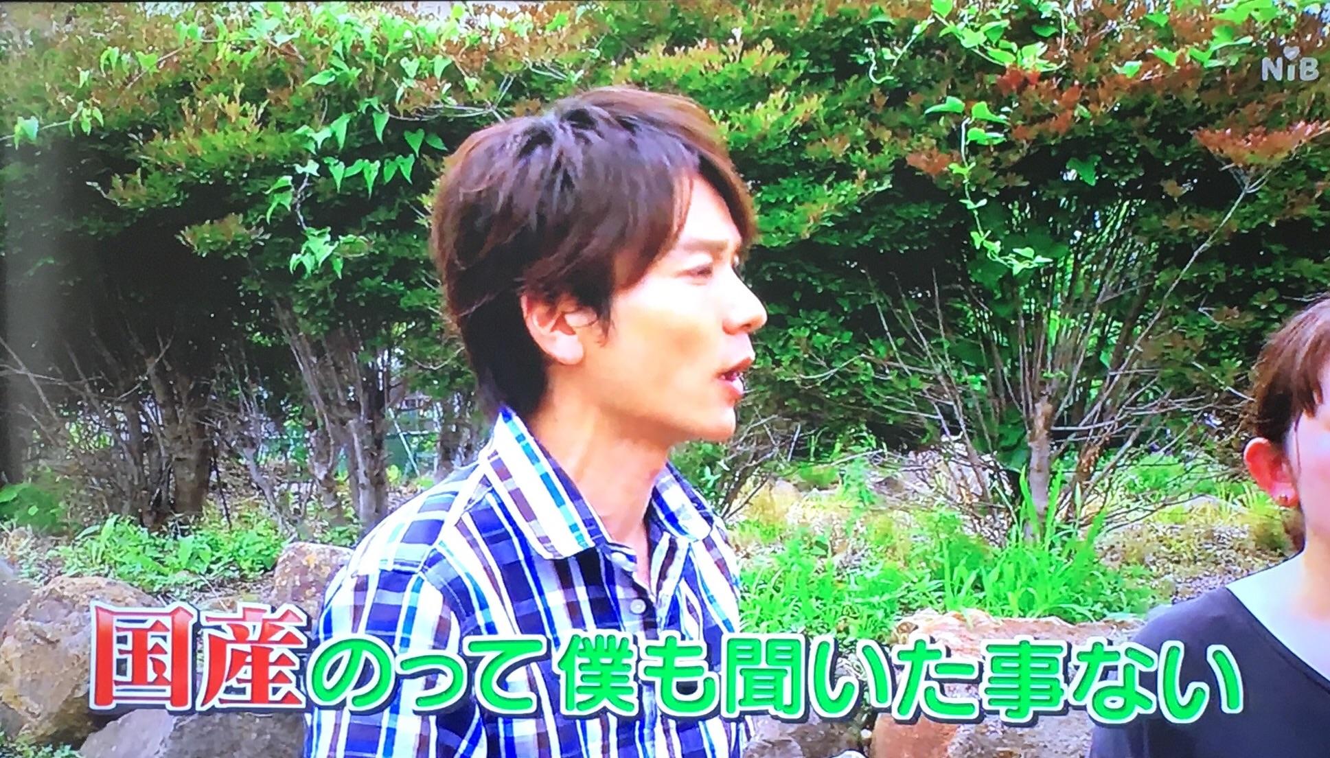 f:id:idehazuki:20170818214641j:image