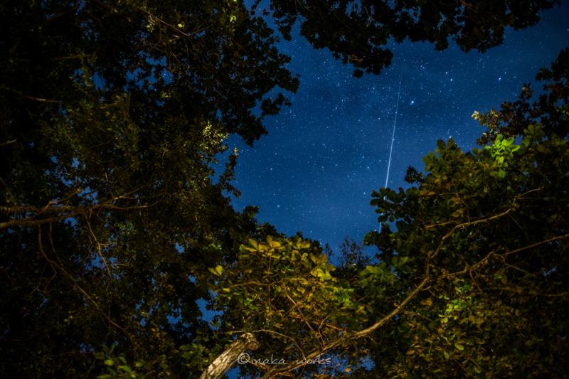 白老町トビウキャンプで見たながれ星