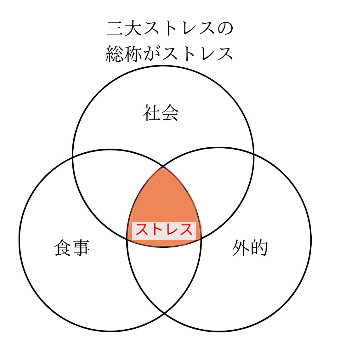 f:id:idorymitsu:20210331165010j:plain