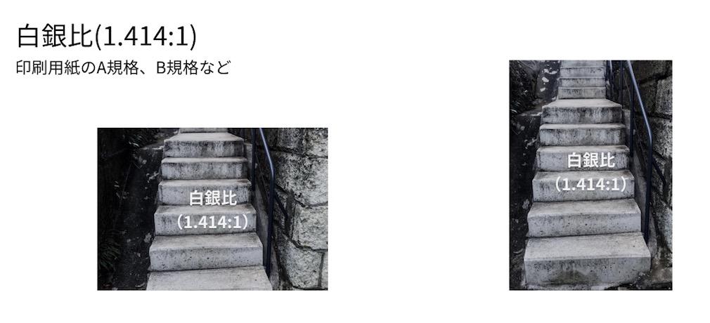 f:id:idr_zz:20190212215832j:plain