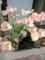 春を謳うパステルカラーのチューリップ