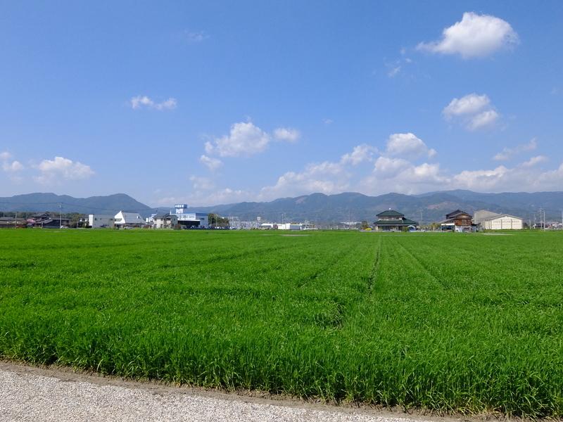 f:id:iechiko:20210424165816j:plain