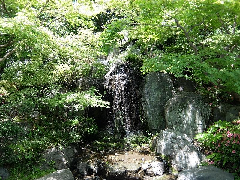 f:id:iechiko:20210613162754j:plain