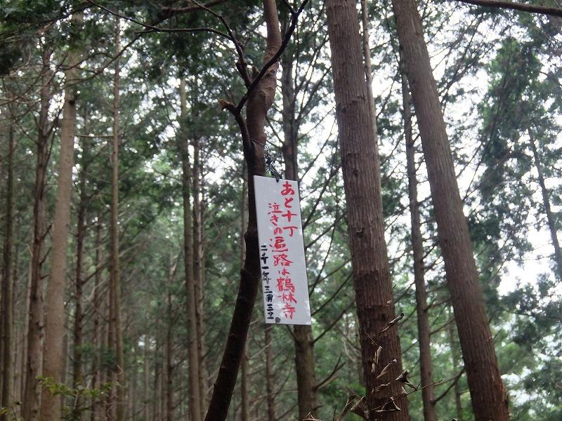 f:id:iechiko:20210715195155j:plain