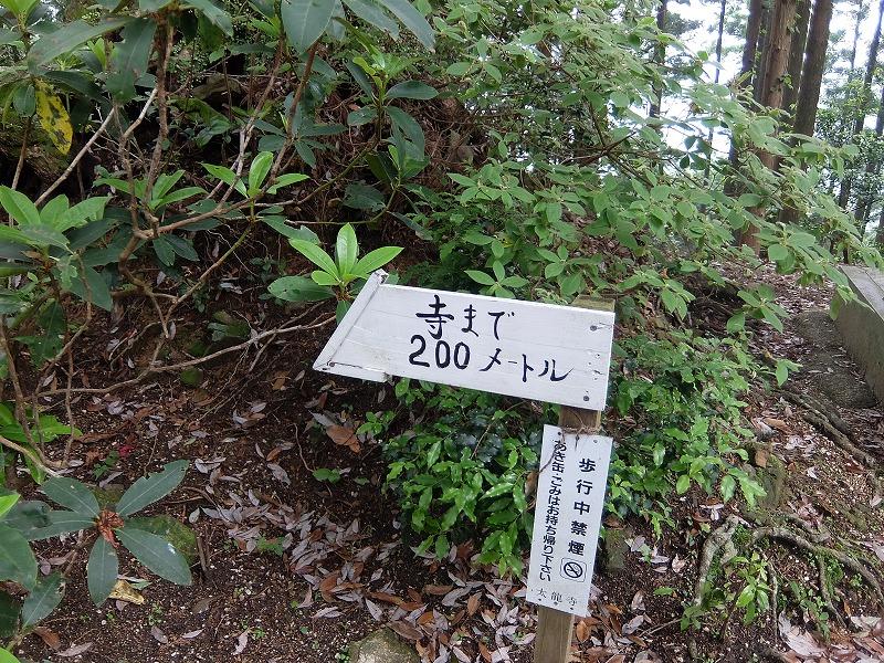 f:id:iechiko:20210715195510j:plain
