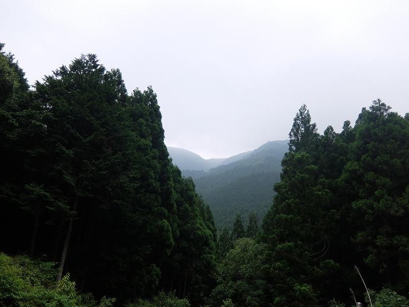 f:id:iechiko:20210715195622j:plain