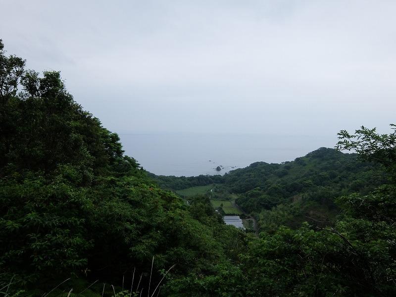 f:id:iechiko:20210717124931j:plain