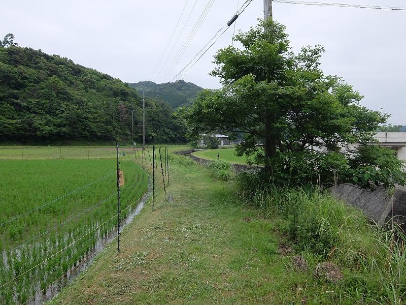 f:id:iechiko:20210717124944j:plain