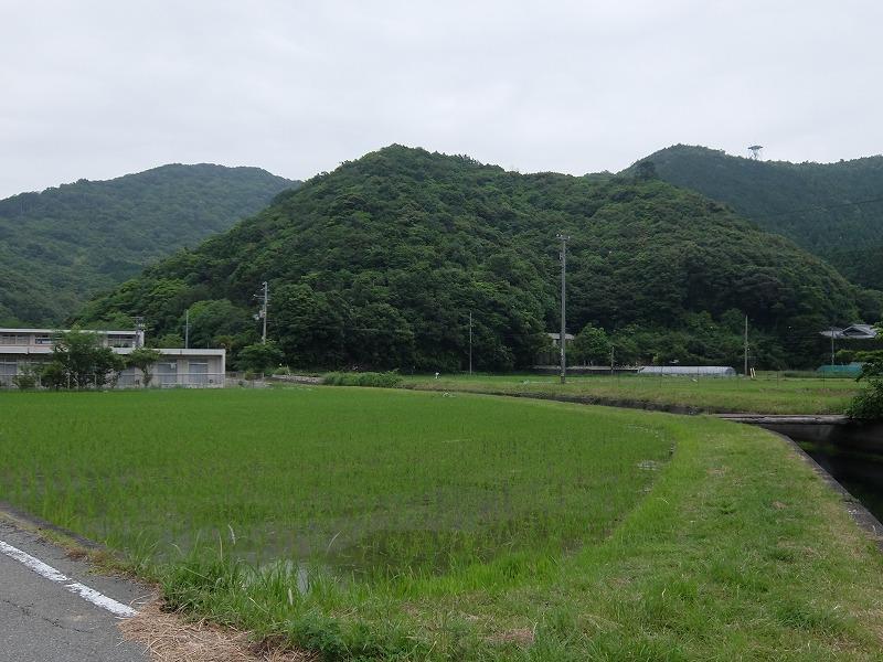 f:id:iechiko:20210717124954j:plain