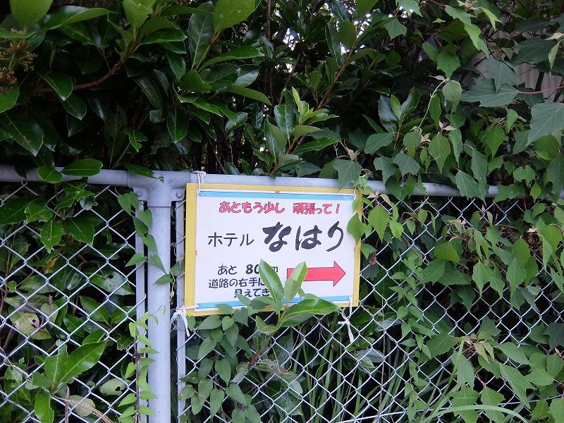 f:id:iechiko:20210718104301j:plain