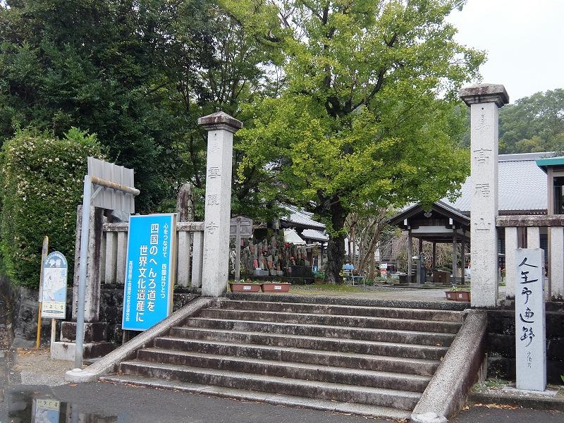 f:id:iechiko:20210725085314j:plain