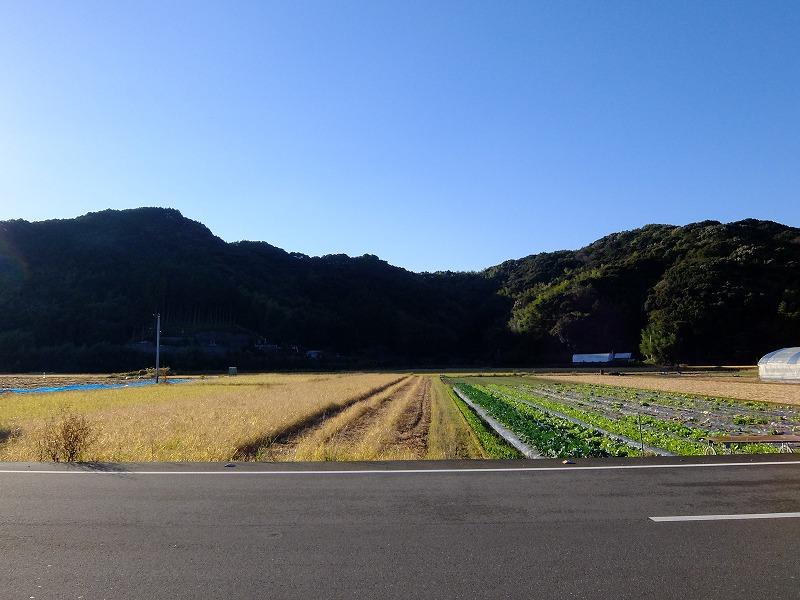f:id:iechiko:20210726201549j:plain