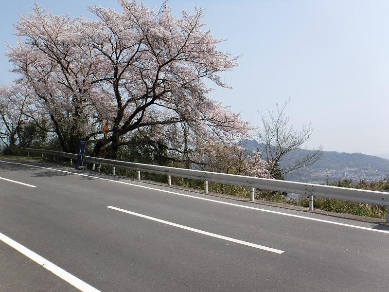 f:id:iechiko:20210911091303j:plain