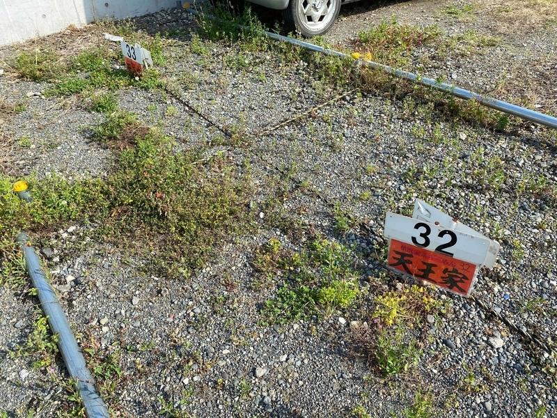 天王家 駐車場