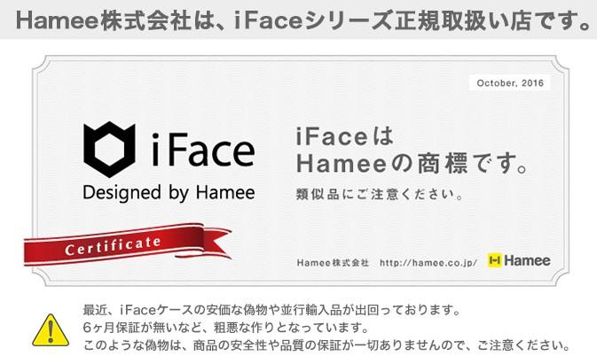 f:id:iface-seiki:20170223012434j:plain