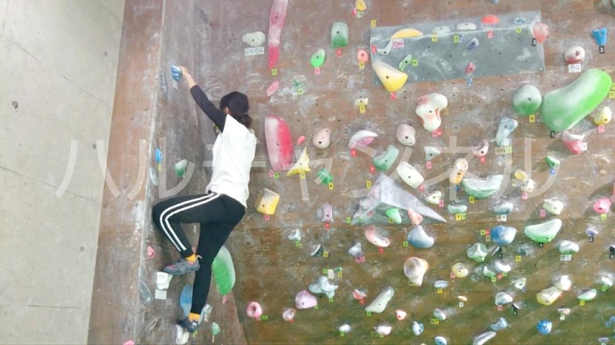 ボルダリングの壁を登っているよ~~