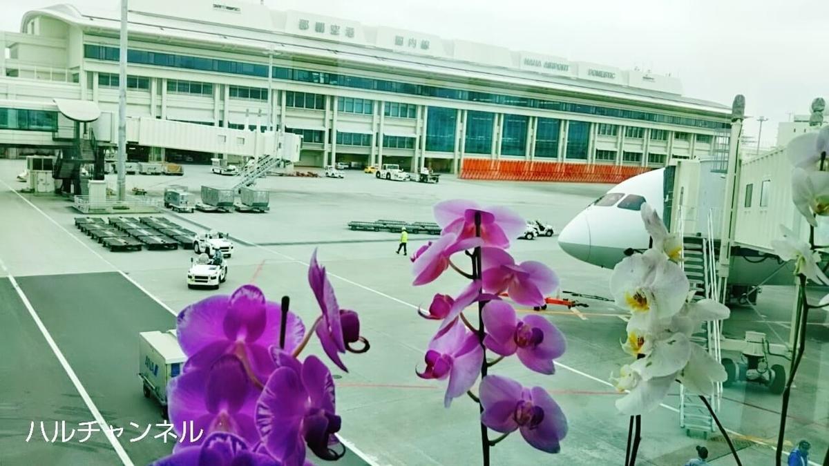 4月の沖縄を観光する時の服装『曇り』