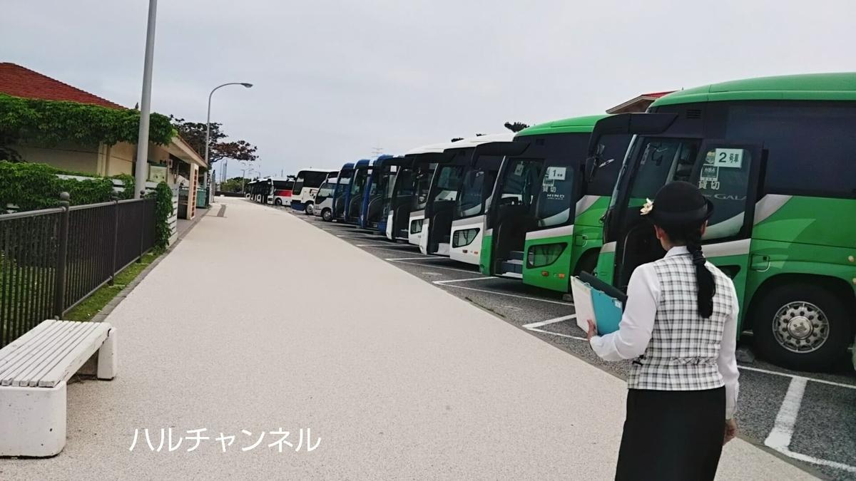 【沖縄】美ら海水族館「バスの駐車場」