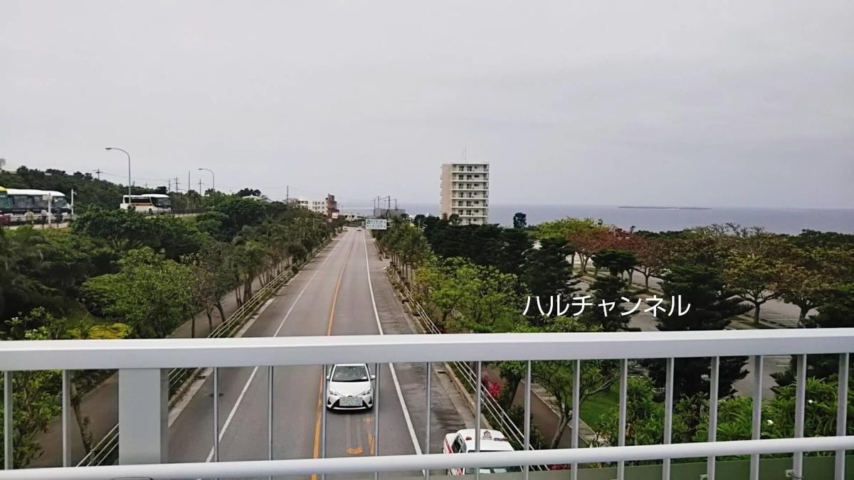 【沖縄】美ら海水族館「入り口に向かう途中の風景」