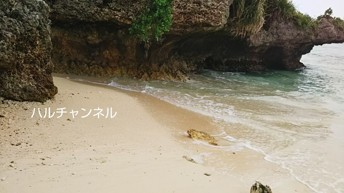 【沖縄】美ら海水族館「浜辺」