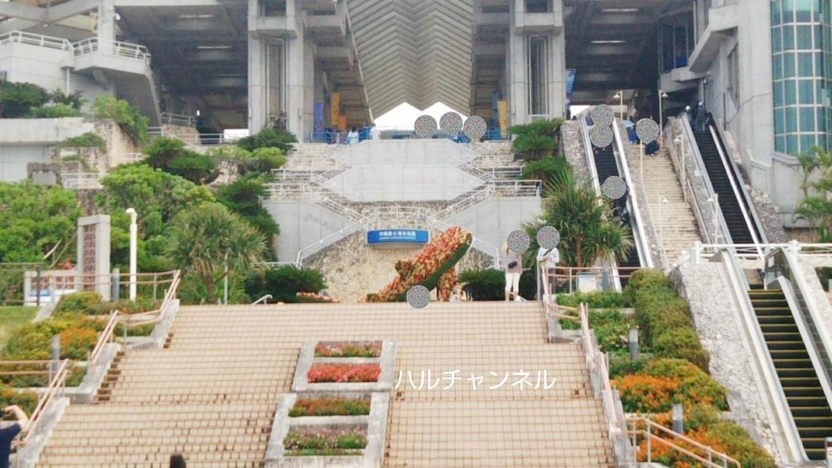 【沖縄】美ら海水族館「大階段の途中にジンベエザメのモニュメントがある」