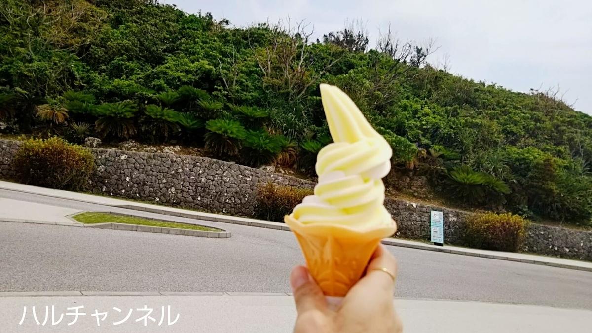 【沖縄】美ら海水族館「ソフトクリーム」