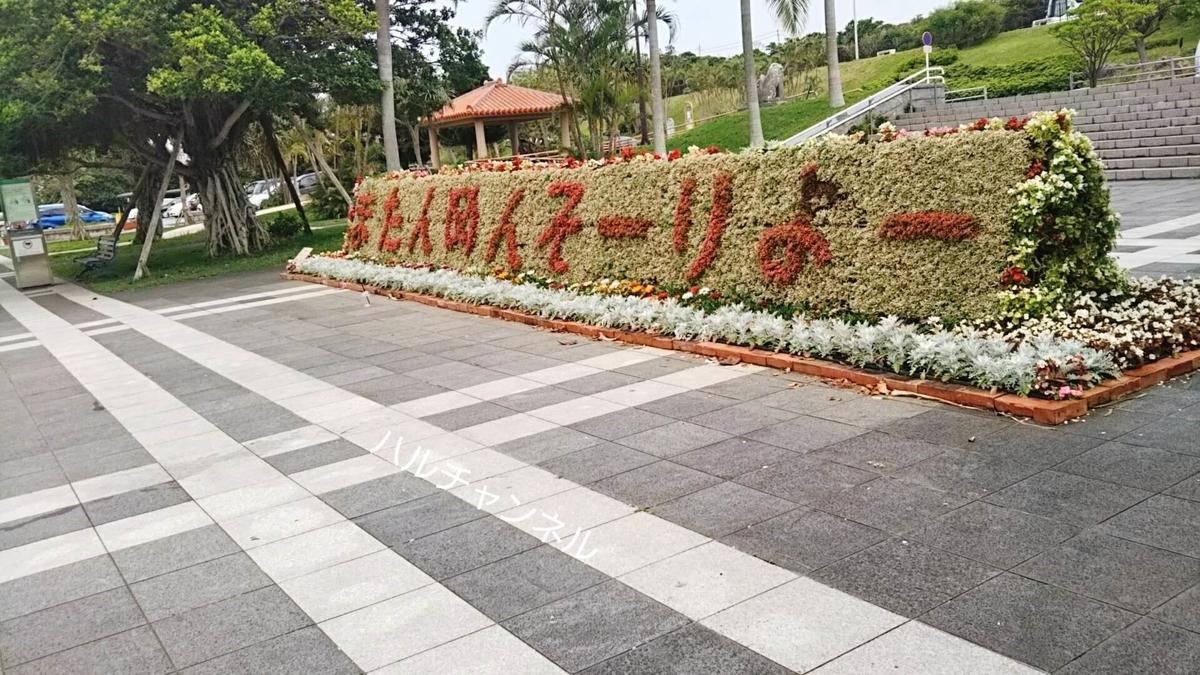 【沖縄】美ら海水族館「バス停に戻るまでの道のり」