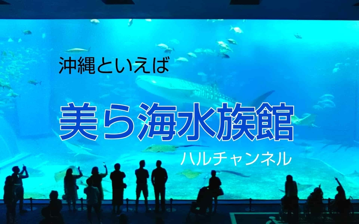 【沖縄】美ら海水族館にバスツアーで行って、ジンベエザメの大水槽の前でランチして来た!